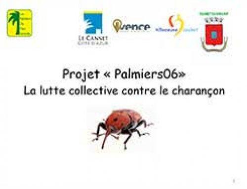 Conférence publique sur la Protection des palmiers