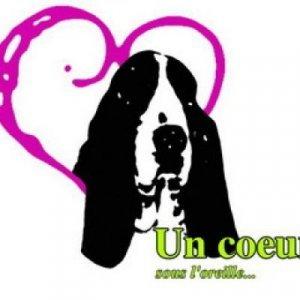 Journée du Coeur en PACA (06)