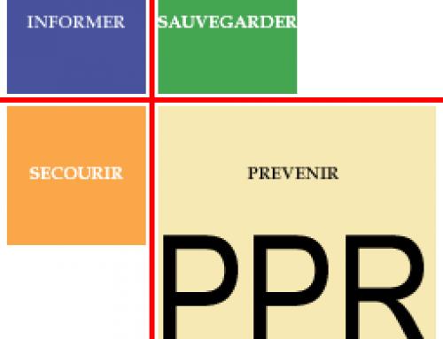 Infos Risques naturels : PPRMvt et PPRIF