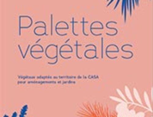 Palettes  végétales