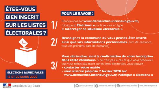 Infographie Inscription Listes Electorales 2020 Etes Vous Bien Inscrit Imagelarge