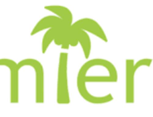 Traitement des palmiers, c'est le moment !