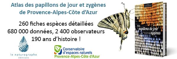 Vers un atlas herpétologique en Provence‐Alpes‐Côte d'Azur