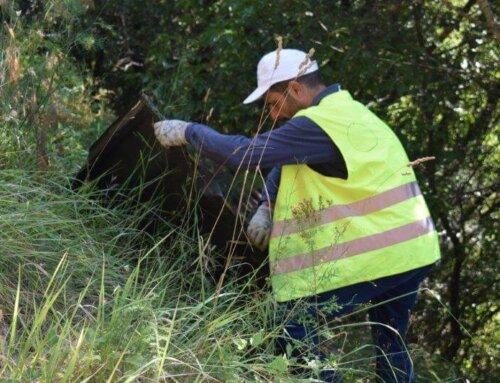 Grand nettoyage de la piste DFCI du Mounard